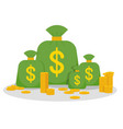 money many bag vector image