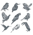 Ink hand drawn bird set vector image