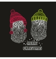 Two winter owls in warm hats vector image
