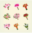 Set of many bouquets of flowers vector image