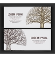 leafless tree ecology nature banner hand-drawn vector image