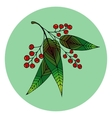 Hand drawn of beautiful rowan berry vector image