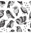 seamless pattern with ink hand drawn exotic birds vector image