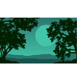 silhouette of tree on the hill at night vector image
