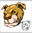 bulldog mascot cartoon head vector image