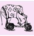 elephant riding a bike vector image