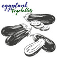 eggplant vegetable set hand drawn vector image vector image