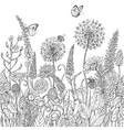 doodle flowers pattern vector image