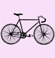 sport bicycle vector image