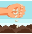 human hand sows seeds into soil vector image