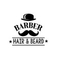 hair and beard man barber shop icon vector image vector image