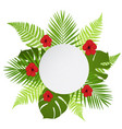 round banner with palm fern and hibiscus vector image