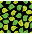 abstract background of green leaf vector image