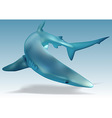 Blue Shark vector image