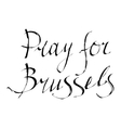Pray for Brussels vector image