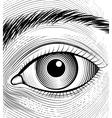 Engraving human eye vector image