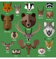 Set of forest animals faces isolated icons vector image