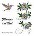 hummingbird and passiflora postcard vector image