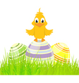 Eggs and chick on grass vector image