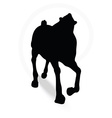 horse silhouette in running pose vector image