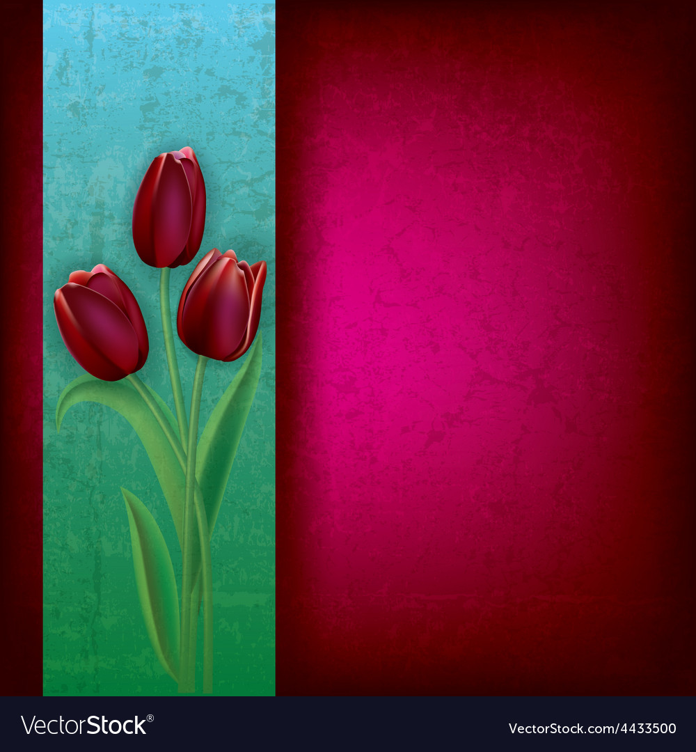 Abstract purple grunge background with red tulips vector