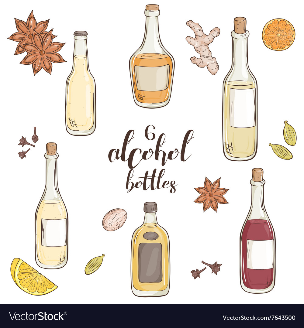 Set of 6 isolated cartoon hand drawn alcohol vector