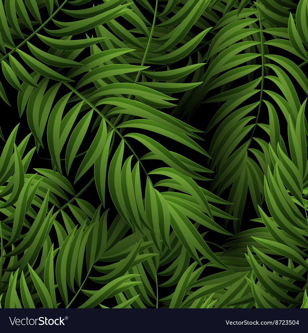Seamless tropical jungle floral pattern with palm vector