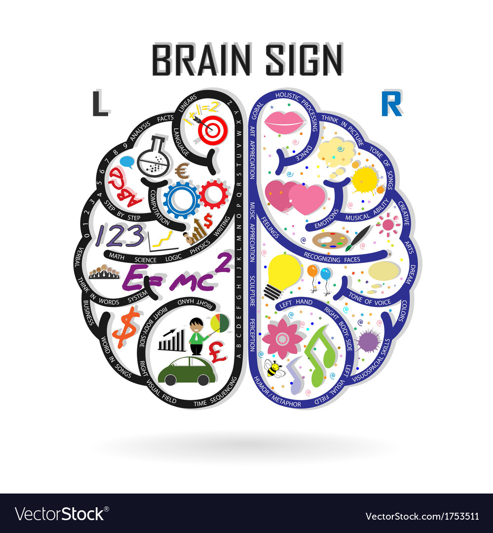Creative left and right brain idea concept vector