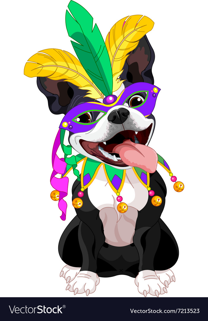 Mardi gras boston terrier vector