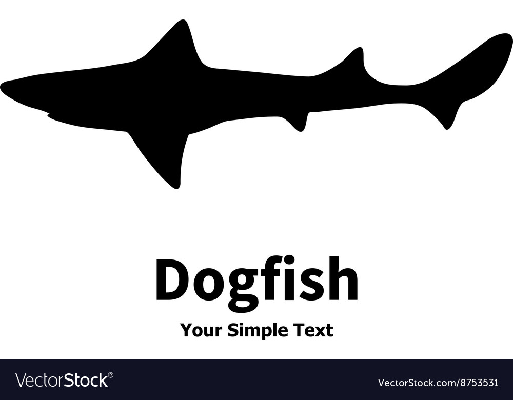 Dogfish vector