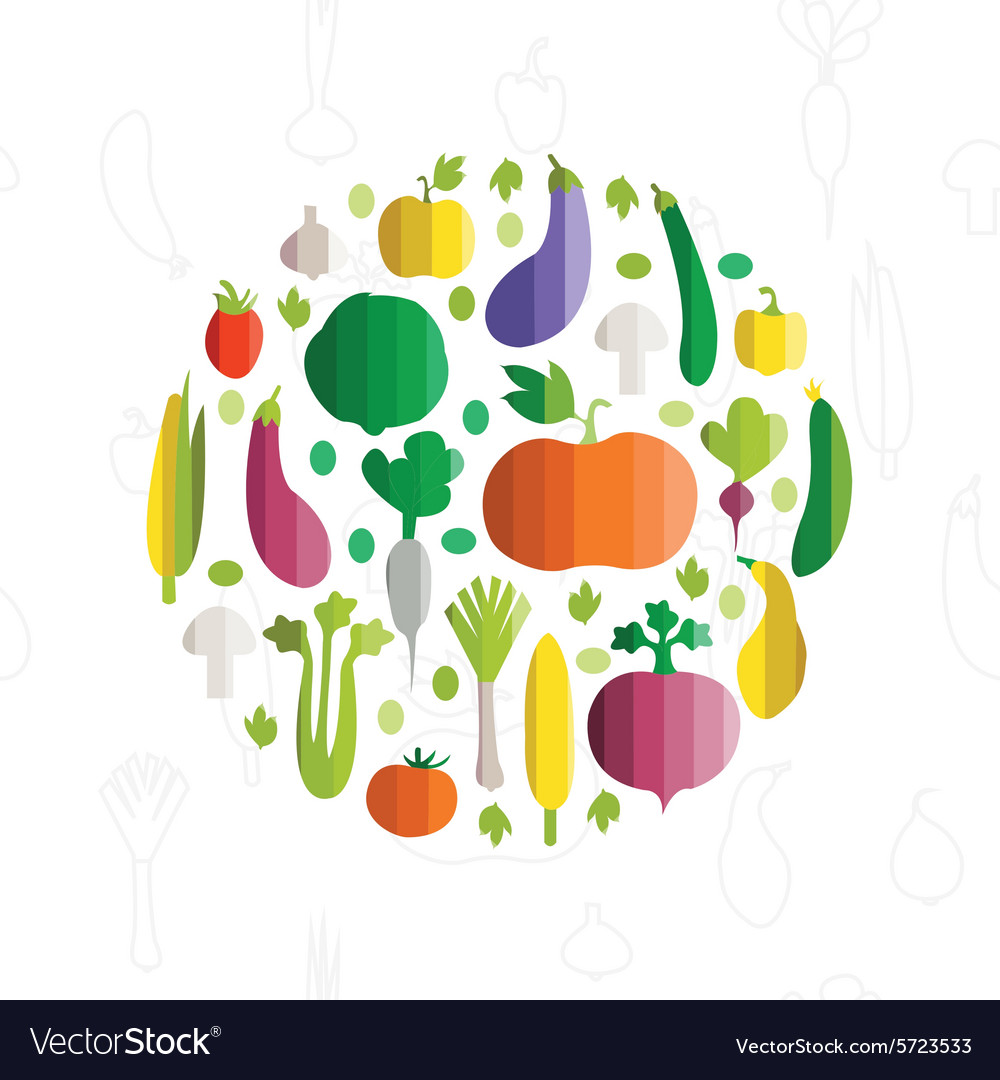Colorful vegetables in modern flat design vector