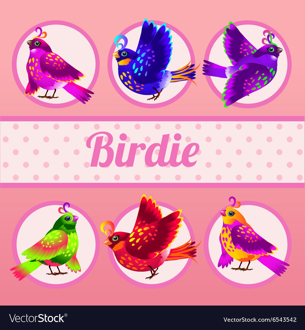 Set of six birds on a pink background vector