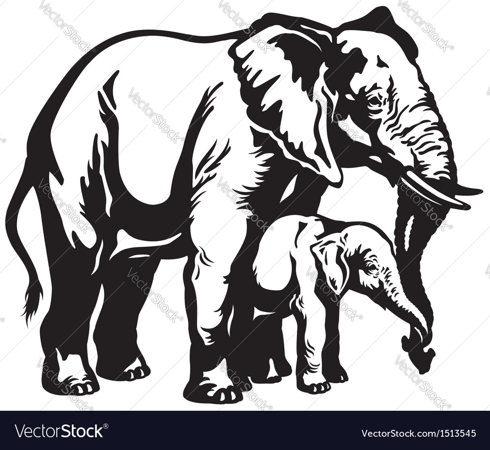 Elephant with baby black white vector