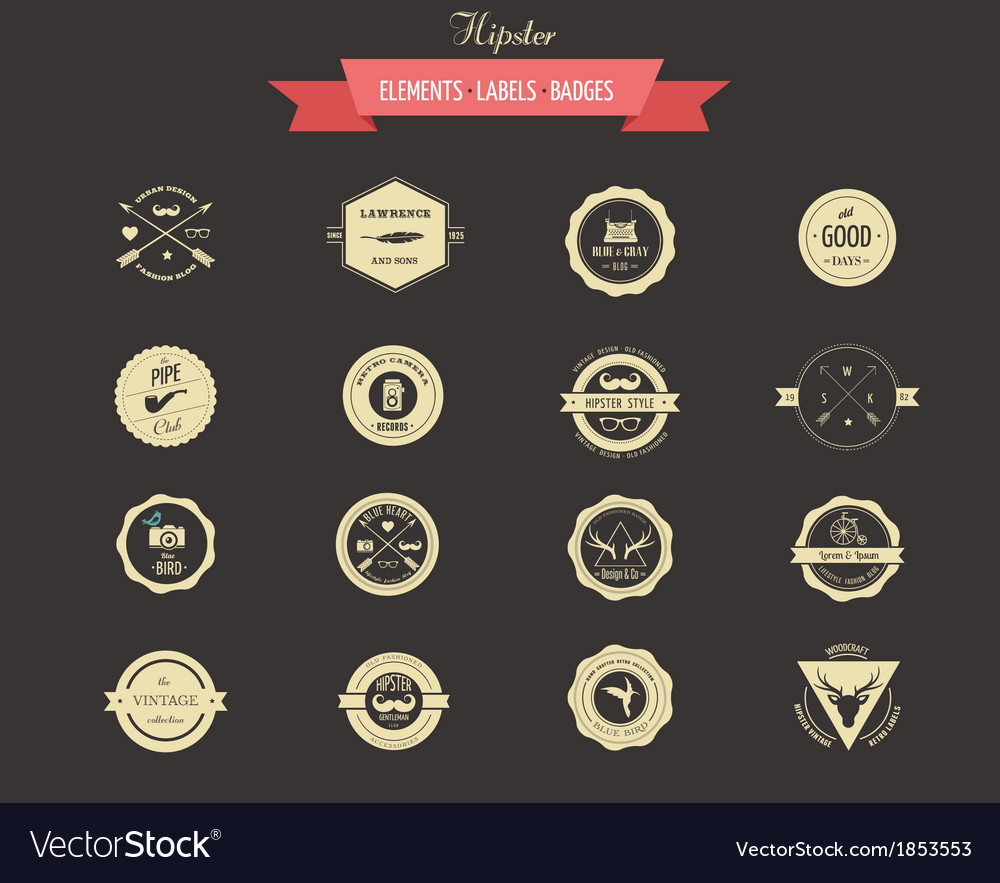 Hipster lables badges and elements vector