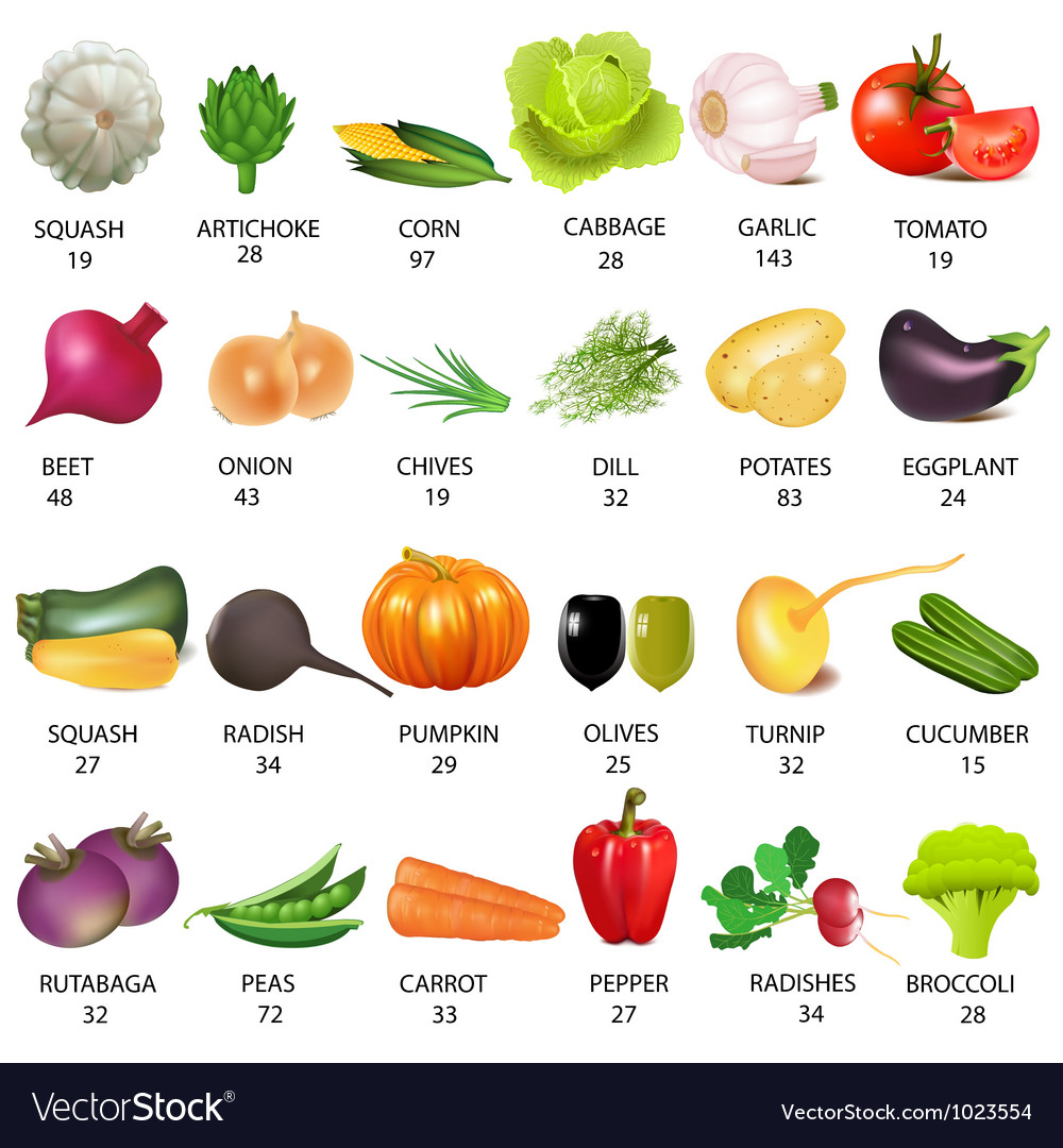 Vegetables calories table vector