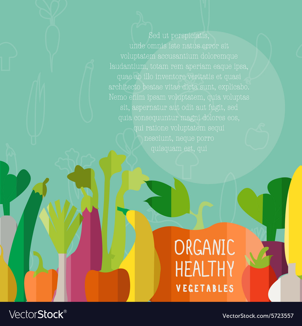 Vegetables in modern flat design style wi vector