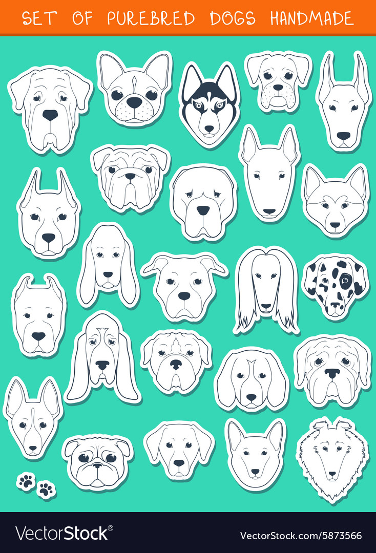 Set of 24 stickers different breeds dogs handmade vector