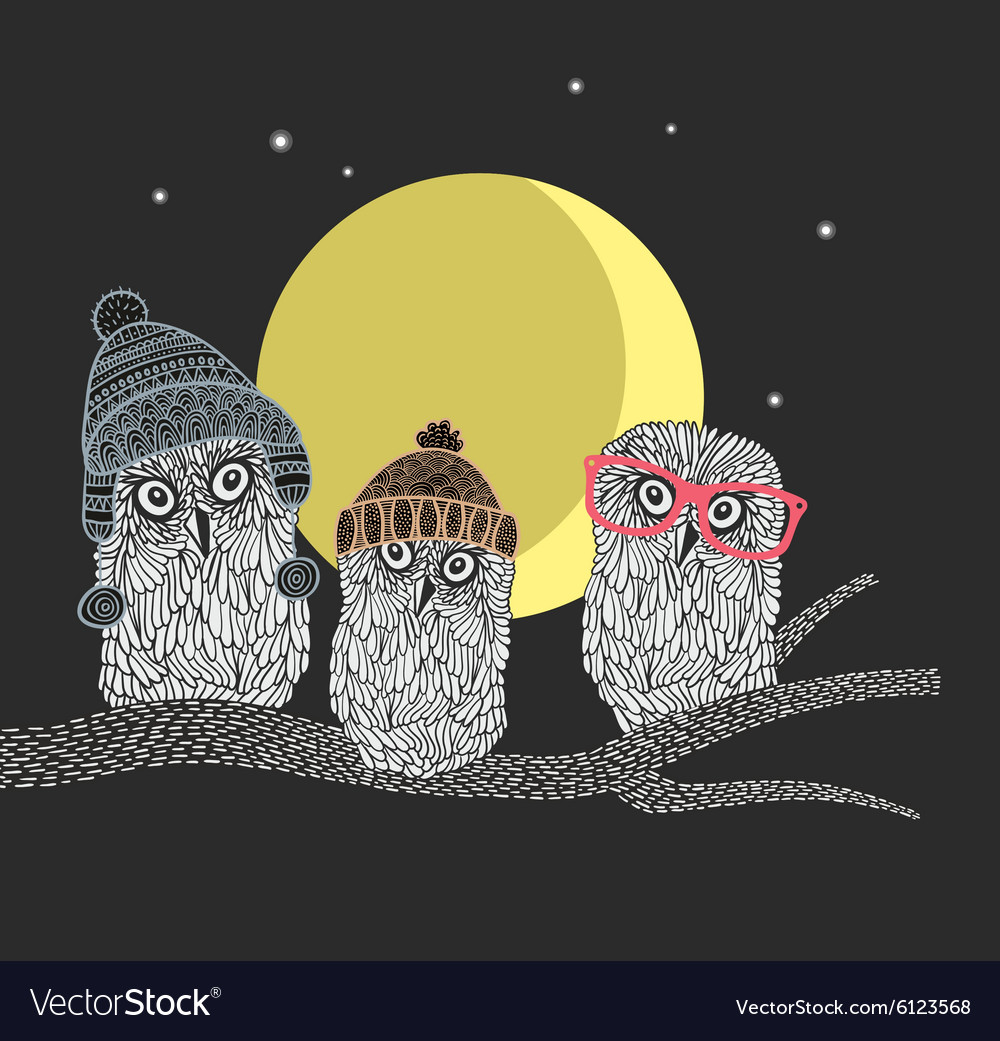 Three owl friends on the tree in the night forest vector
