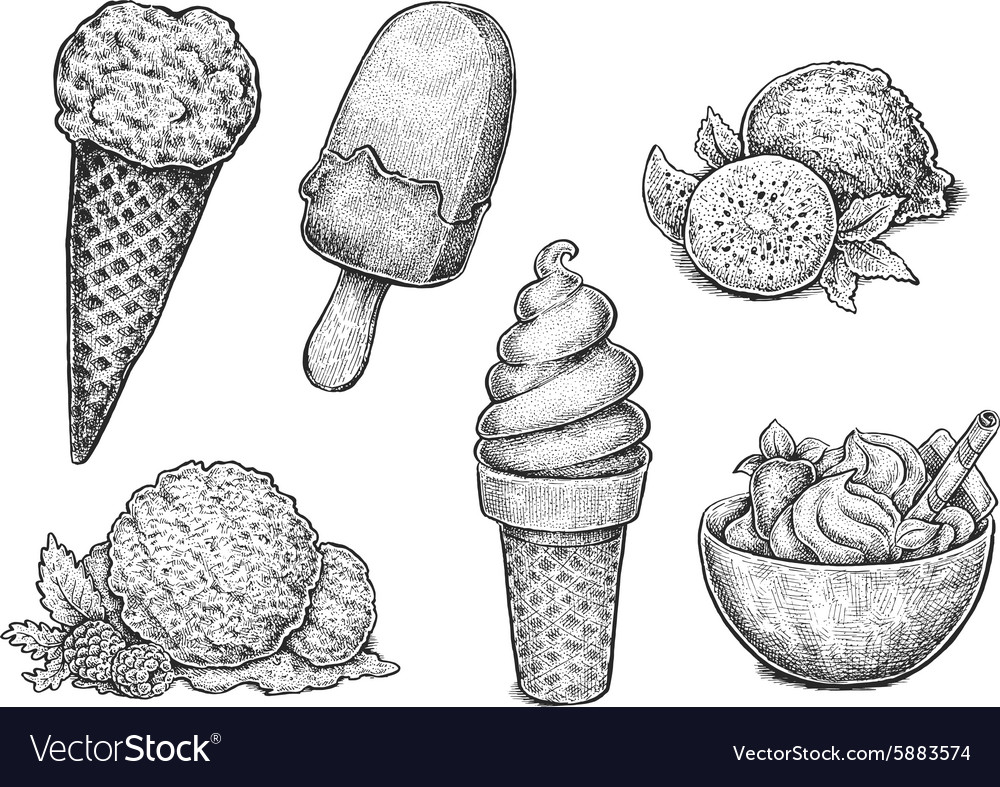 Collection of hand drawn ink sketches of ice cream vector