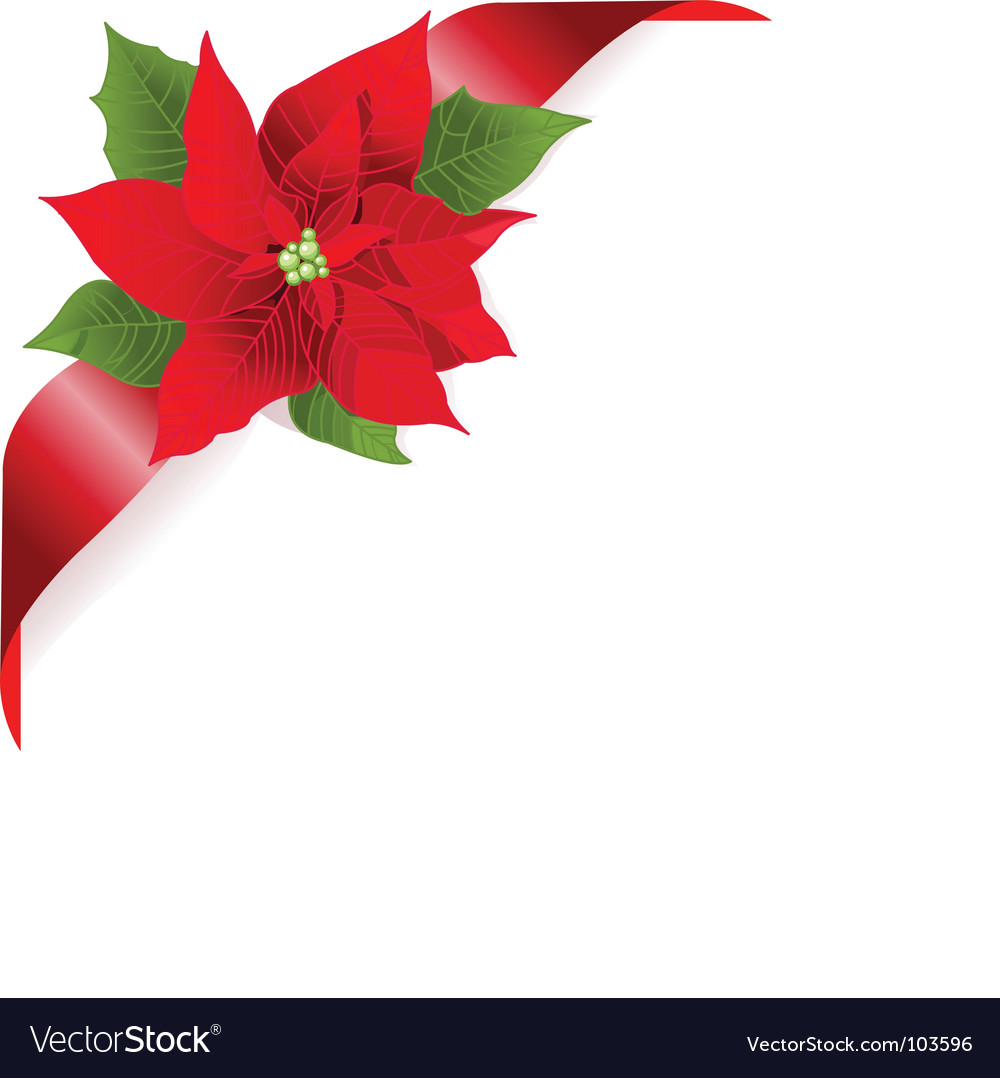 Red poinsettia vector