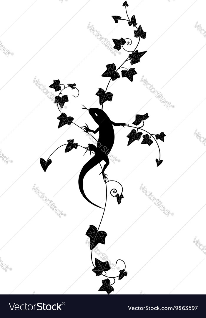 Ivy and lizard vector