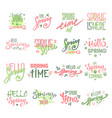 spring time lettering text for greeting card vector image
