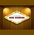 theater sign on curtain with spotlight vector image