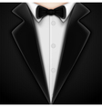 Tuxedo with bow tie vector image vector image