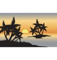 Palm in beach at sunset vector image