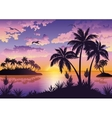 Tropical islands palms sky and birds vector image