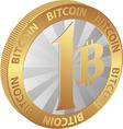 bitcoin23a1 vector image