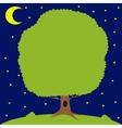 Green tree on meadow moon is shining vector image