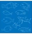 Set of tropical fish vector image