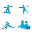 set of winter sport symbols vector image